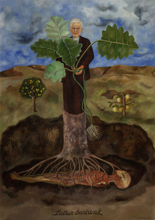 Portrait of Luther Burbank, 1931 Museo Dolores Olmedo, Xochimilco, Mexico © 2015 Banco de México Diego Rivera Frida Kahlo Museums Trust  Mexico, D.F. / Artists Rights Society (ARS), New York